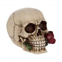 Rose From the Dead Skull Ornament 15cm