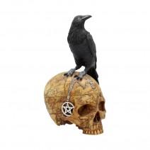 Salems Familiar Box Gothic Raven Skull Witch Pentagram Trinket Box