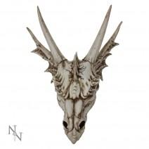 The Last Dragon Skull Realistic Reptile Skeleton Head