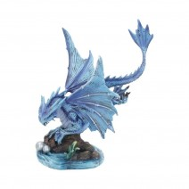 Anne Stokes Adult Water Dragon 31cm